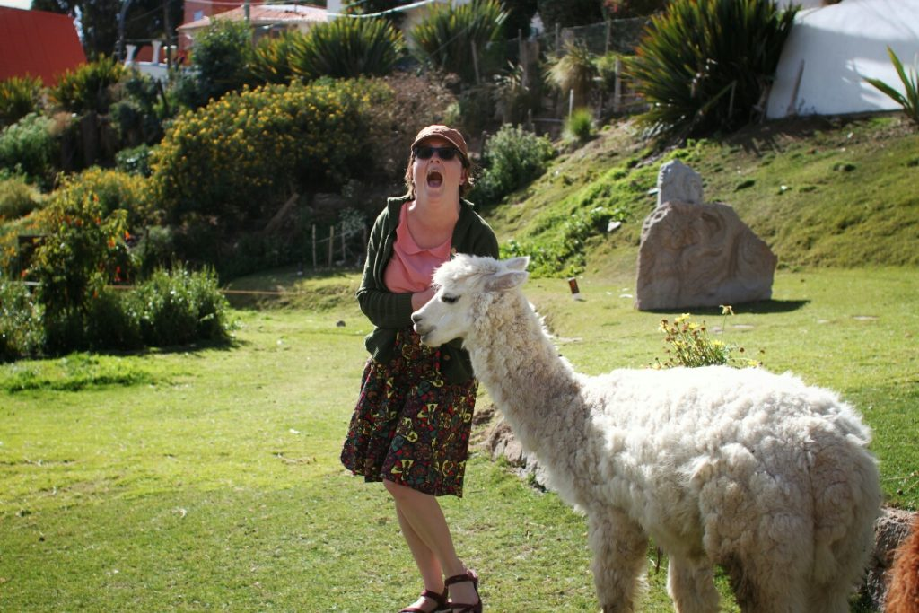 Alpaca gets a bit too friendly with Renée
